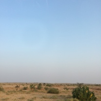 Driving through the Thar Desert